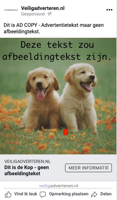 Facebook Afbeeldingtekst Advertenties 2021 veiligadverteren.nl